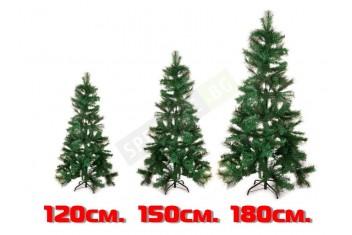 Смесена зелена елха