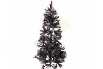 Черна елха